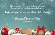 Felices Navidad y un mejor año 2019 !!!